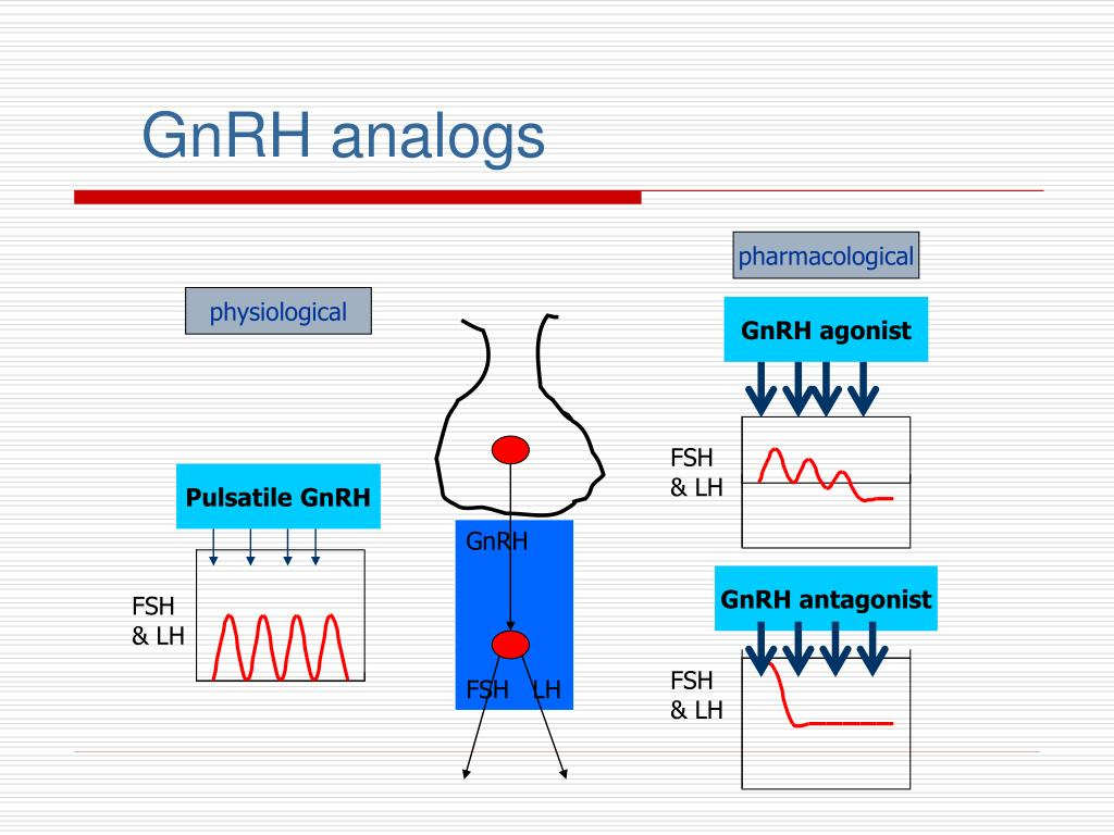 GnRH analogs