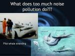 what does too much noise pollution do