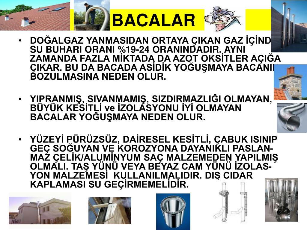 BACALAR