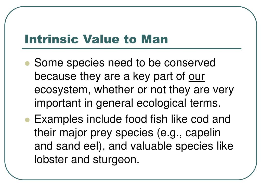 Intrinsic Value to Man