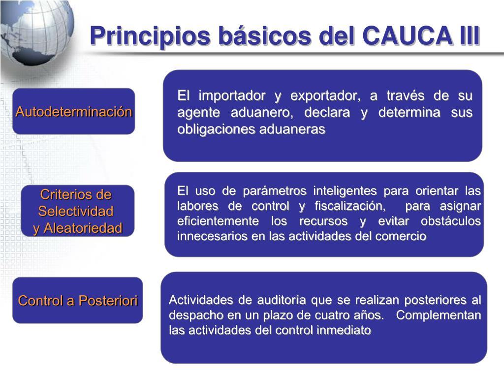 Principios básicos del CAUCA III