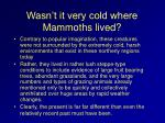 wasn t it very cold where mammoths lived