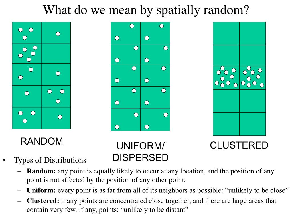 What do we mean by spatially random?