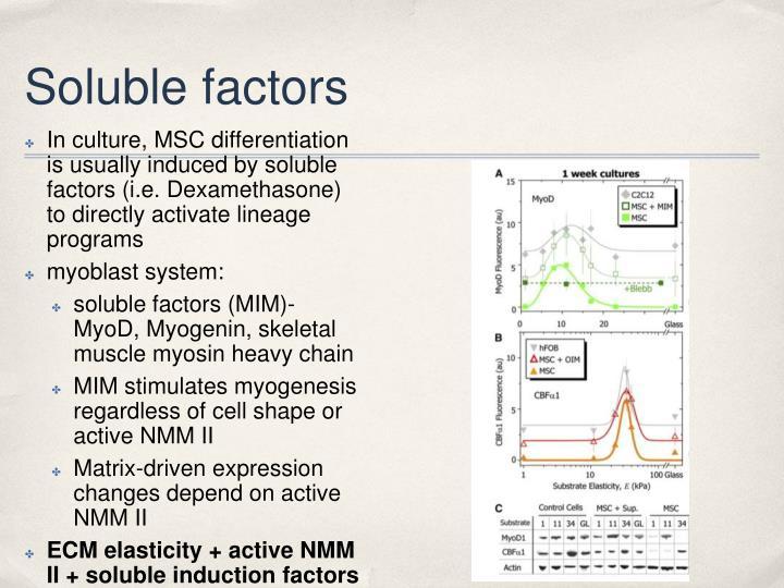 Soluble factors