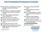 cali professional development includes