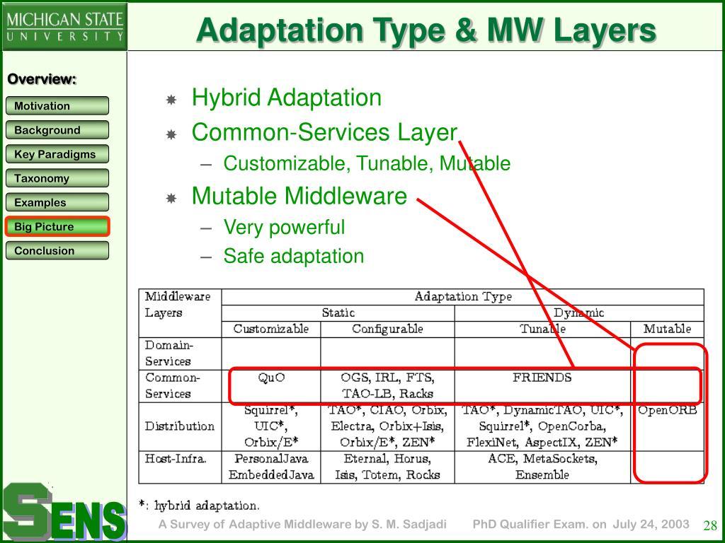 Adaptation Type & MW Layers