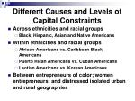 different causes and levels of capital constraints