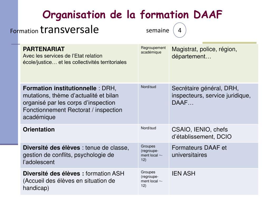 Organisation de la formation DAAF