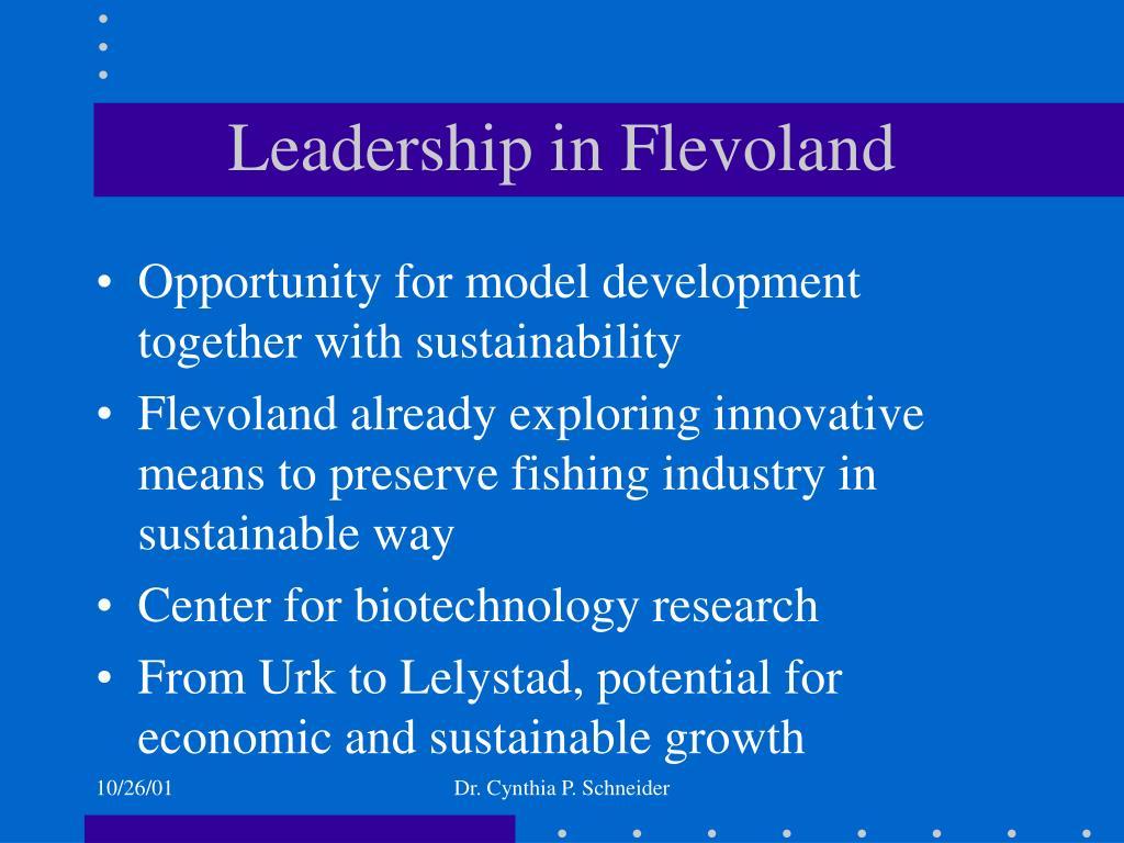 Leadership in Flevoland