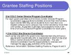 grantee staffing positions