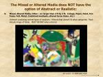 the mixed or altered media does not have the option of abstract or realistic