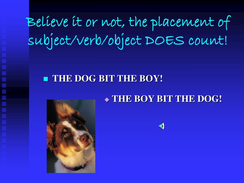 THE DOG BIT THE BOY!