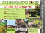vegetated green roof pilot