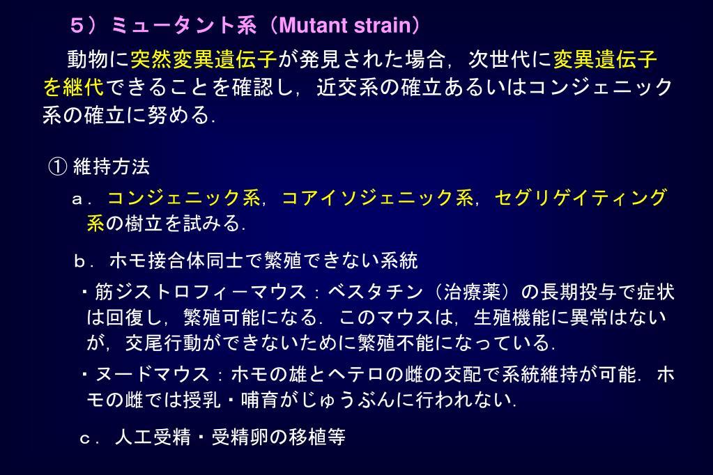 5)ミュ-タント系(