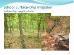 school surface drip irrigation surface drip irrigation field