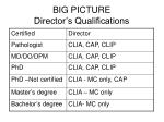 big picture director s qualifications