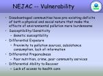 nejac vulnerability