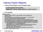 library cache objects
