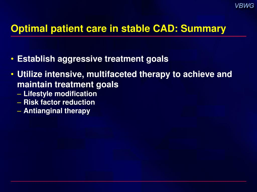 Optimal patient care in stable CAD: Summary