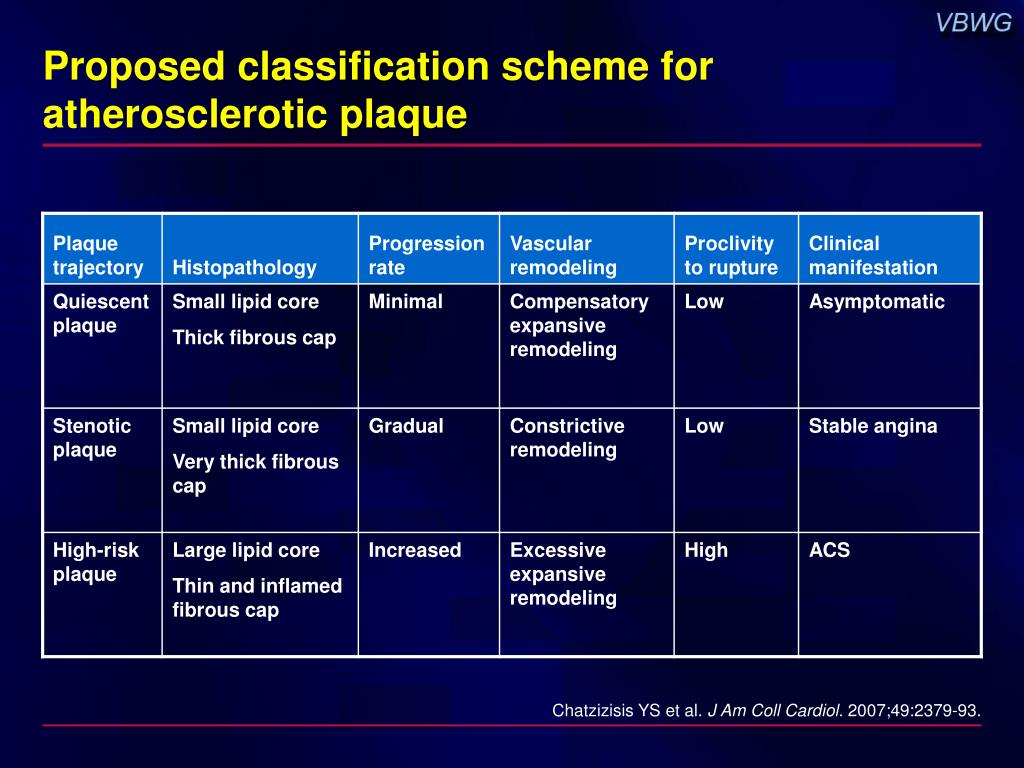 Proposed classification scheme for atherosclerotic plaque