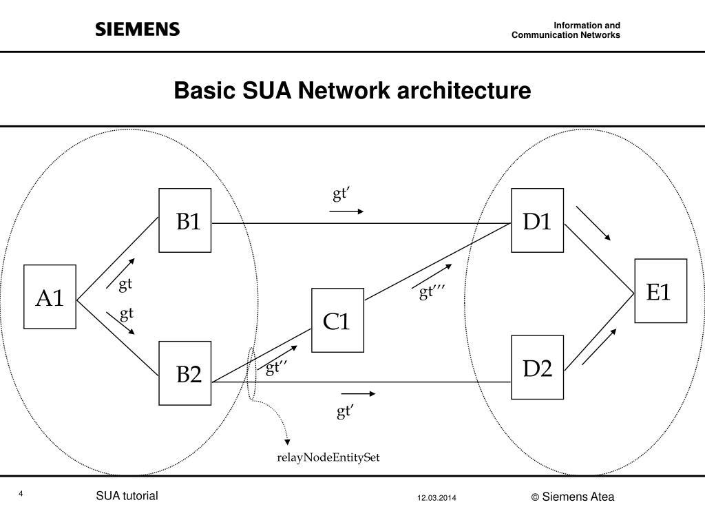 Basic SUA Network architecture