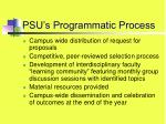 psu s programmatic process