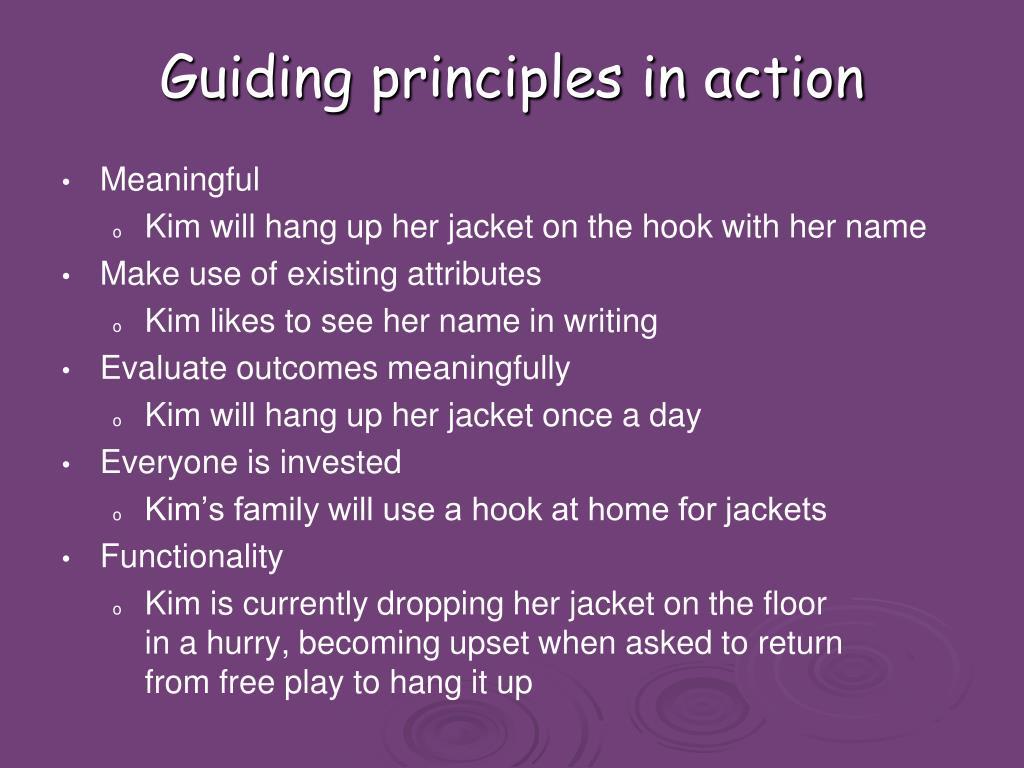 Guiding principles in action