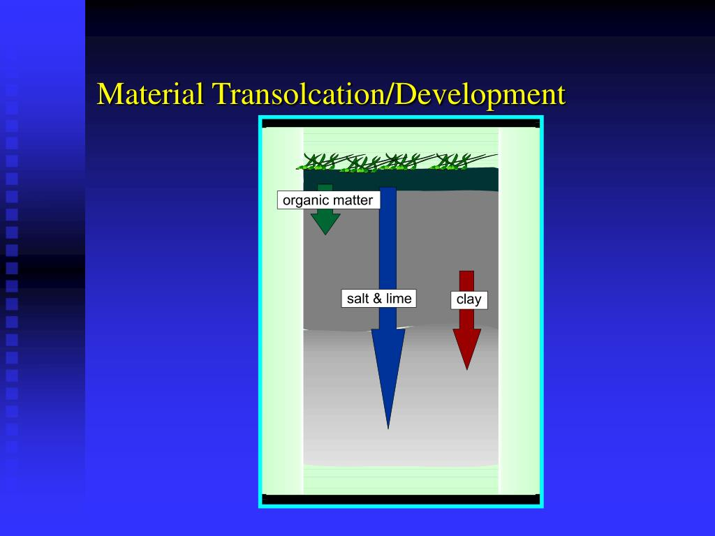 Material Transolcation/Development