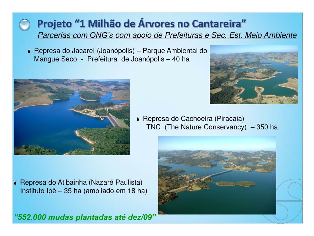 """Projeto """"1 Milhão de Árvores no Cantareira"""""""