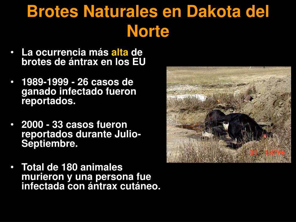 Brotes Naturales en Dakota del Norte