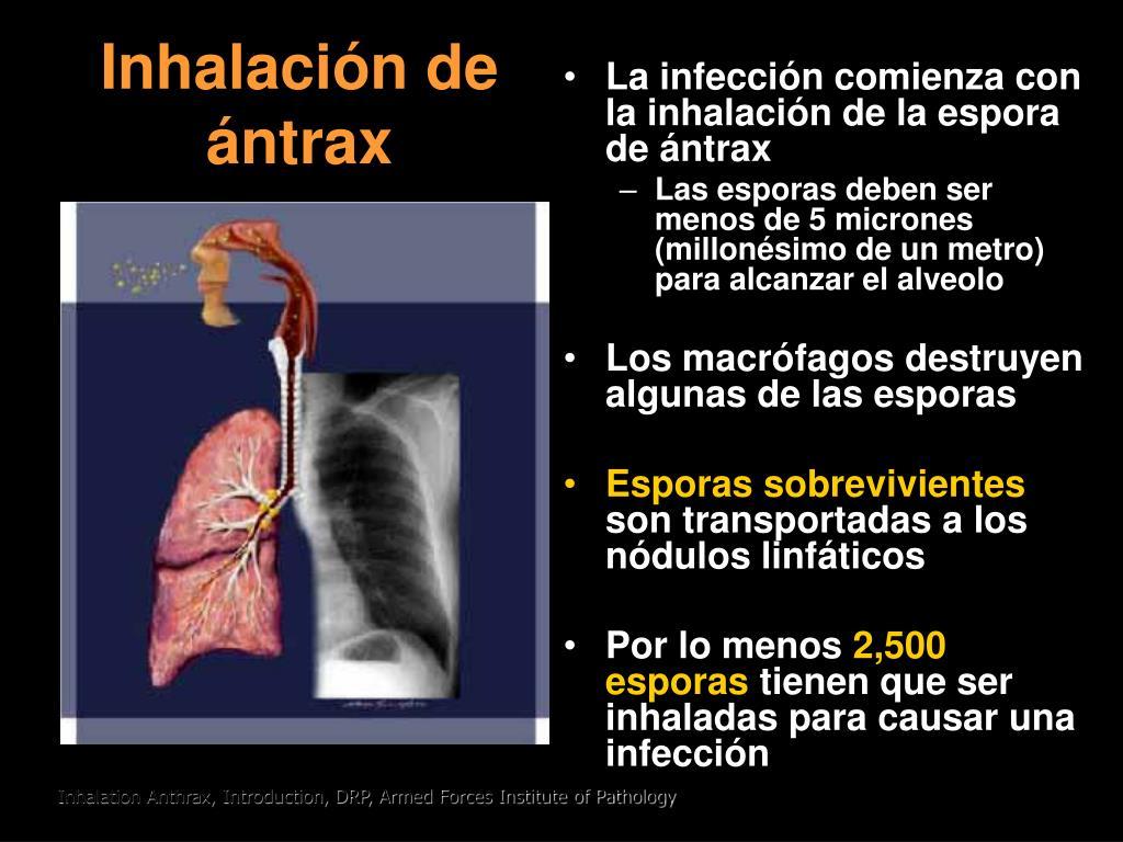 Inhalaci