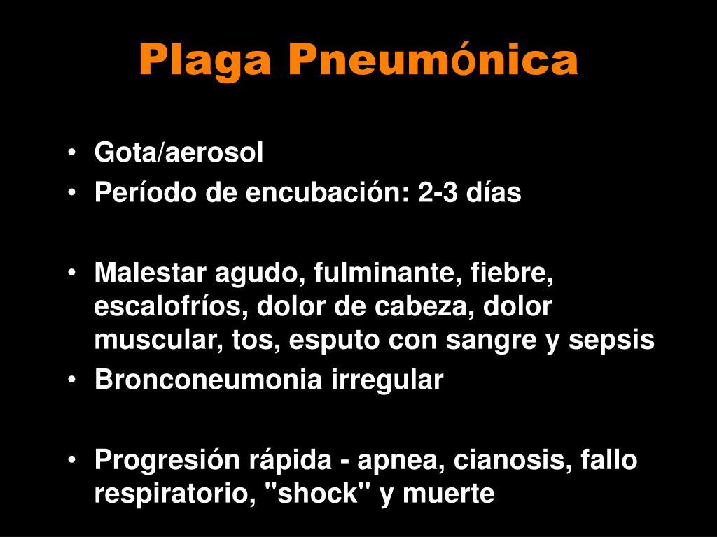 Plaga Pneum