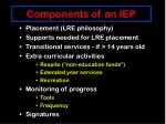 components of an iep24