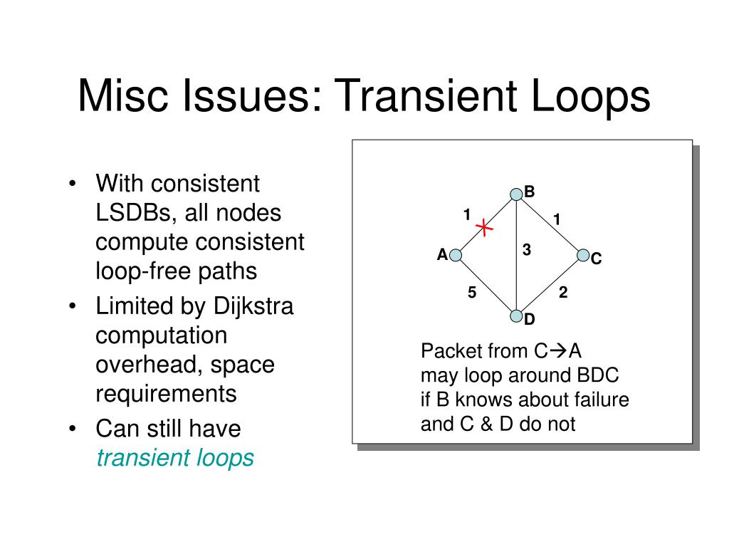 Misc Issues: Transient Loops