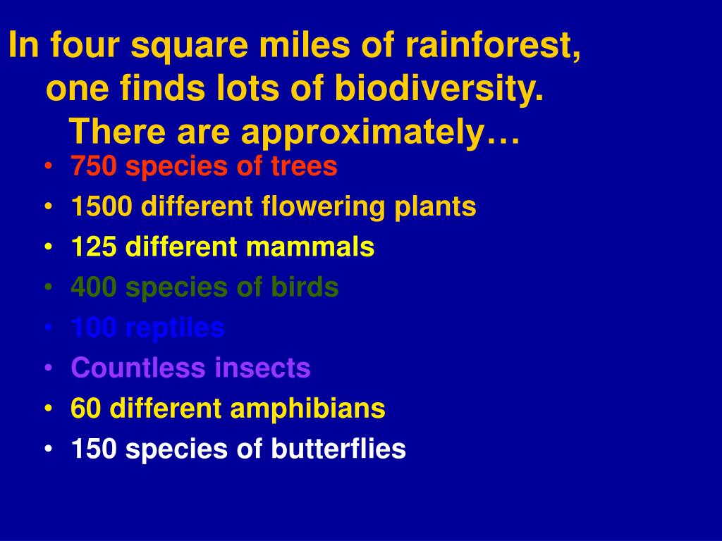 in four square miles of rainforest one finds lots of biodiversity there are approximately l.