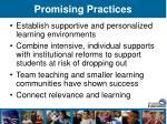 promising practices43