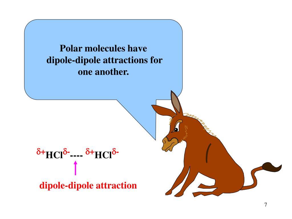 Polar molecules have