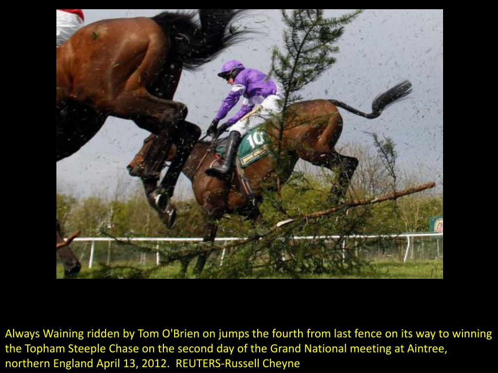 Always Waining ridden by Tom O'Brien on jumps the fourth from last fence on its way to winning the Topham Steeple Chase on the second day of the Grand National meeting at Aintree, northern England April 13, 2012.  REUTERS-Russell Cheyne
