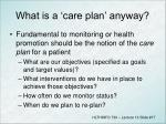 what is a care plan anyway