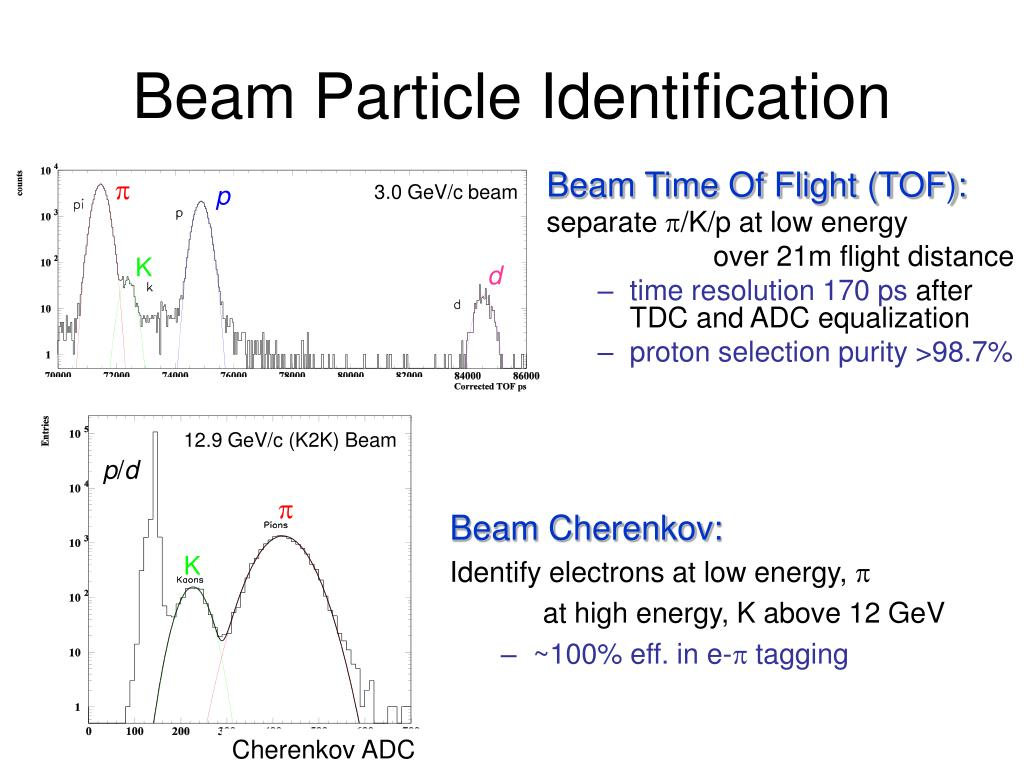Beam Particle Identification
