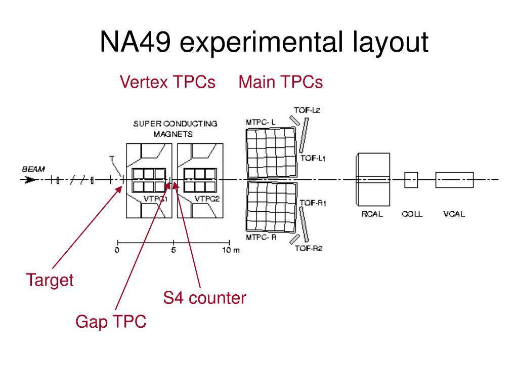 NA49 experimental layout