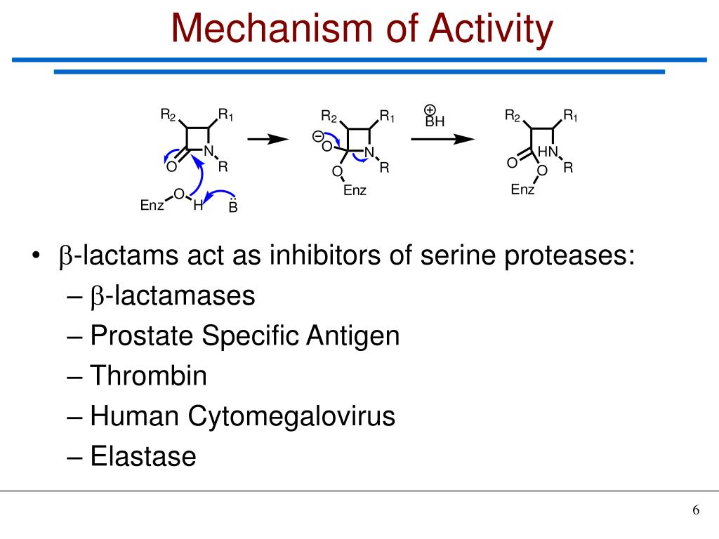 Mechanism of Activity