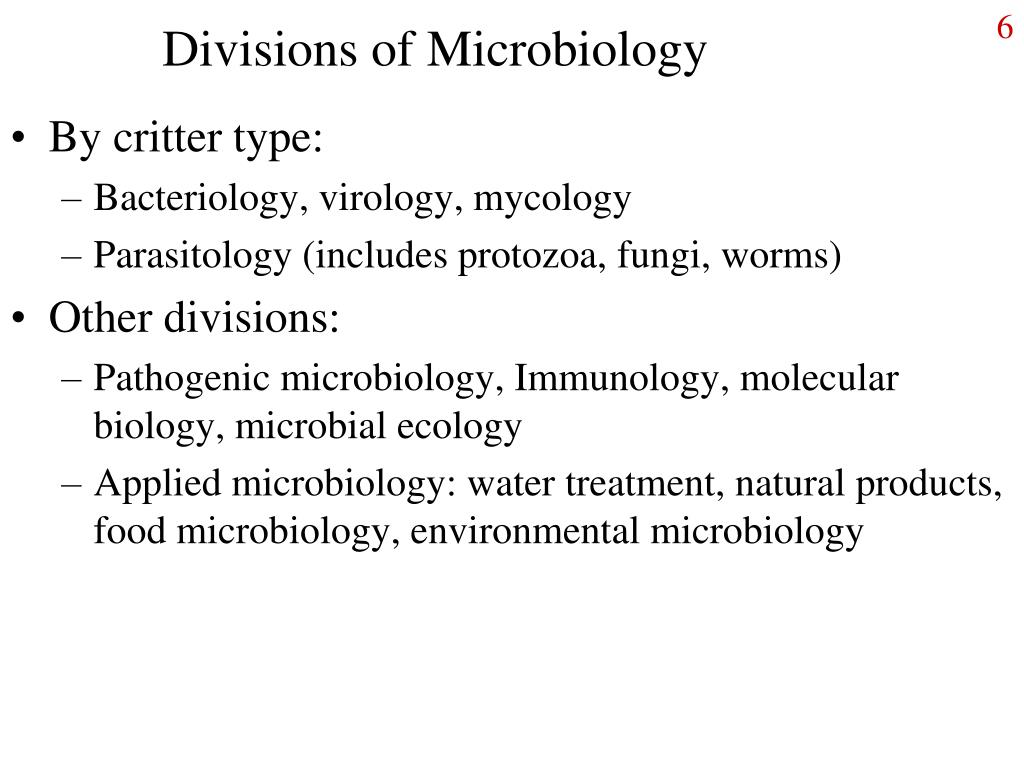 Divisions of Microbiology
