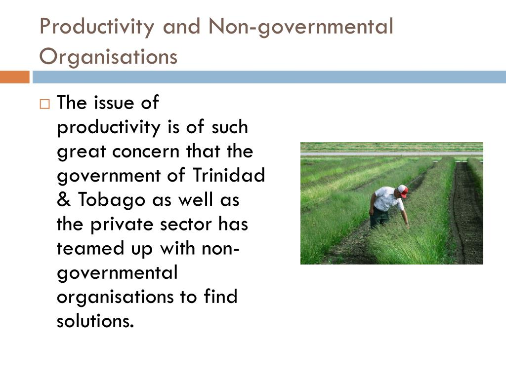 Productivity and Non-governmental Organisations