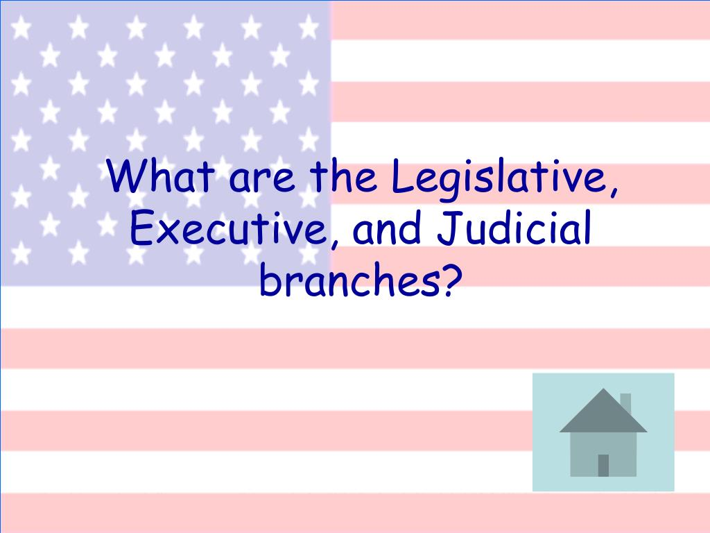 What are the Legislative, Executive, and Judicial branches?