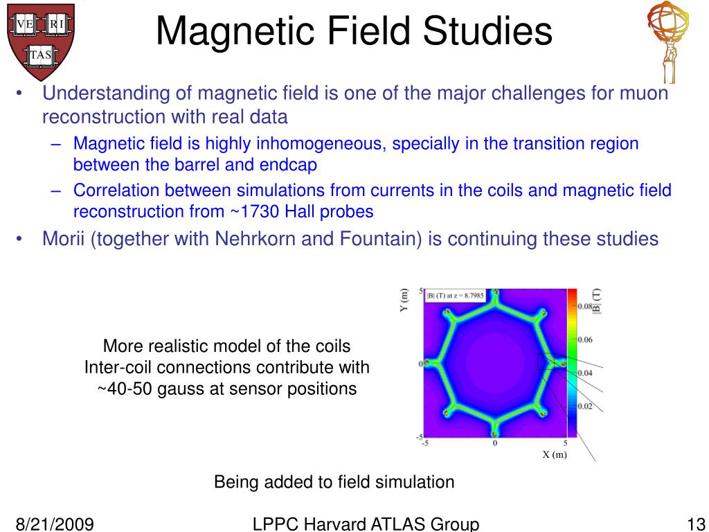 Magnetic Field Studies