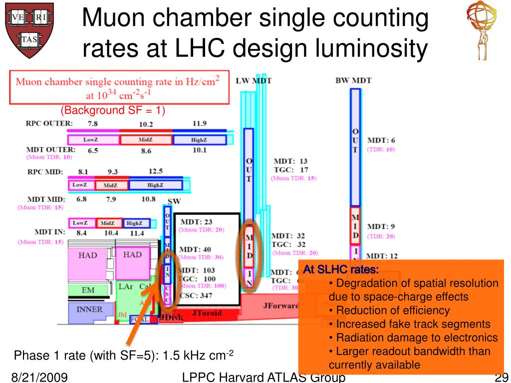 Muon chamber single counting rates at LHC design luminosity
