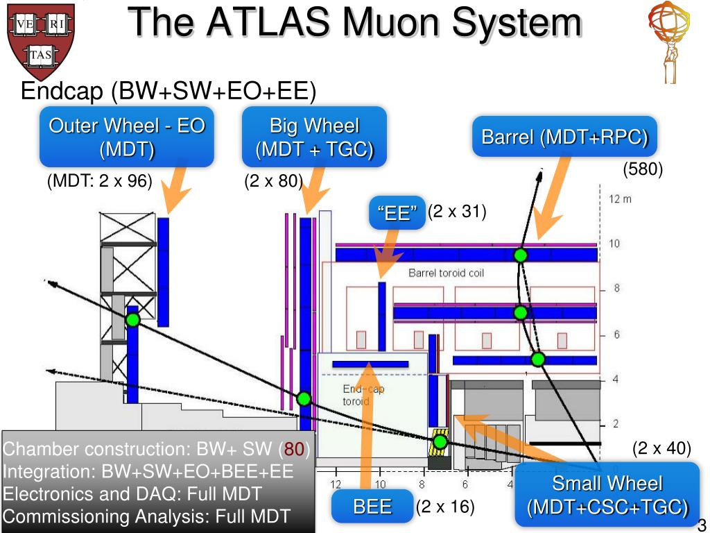 The ATLAS Muon System
