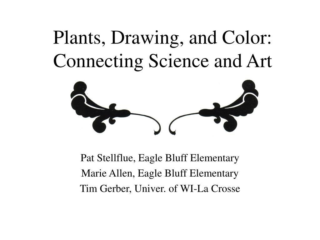 plants drawing and color connecting science and art l.