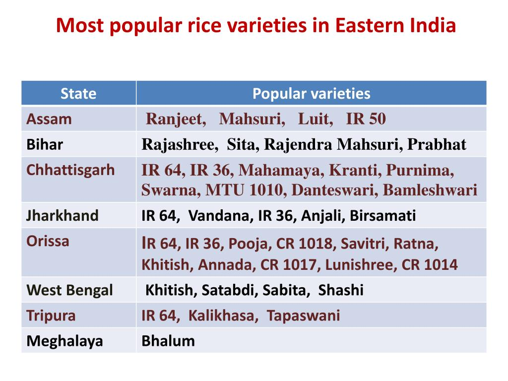 Most popular rice varieties in Eastern India